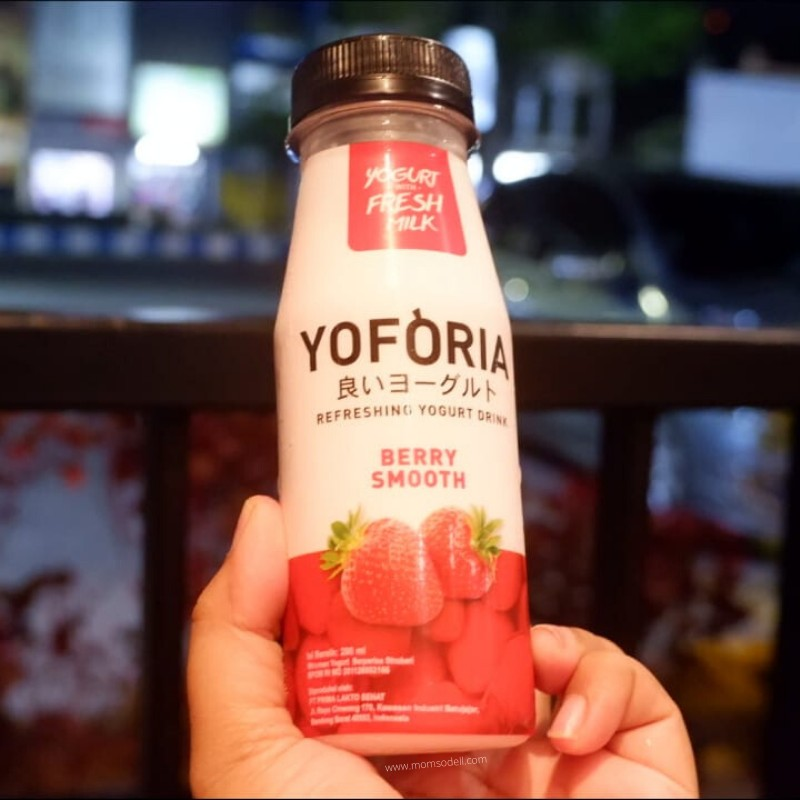 Yoforia Fresh Yogurt  Live Probiotics 3